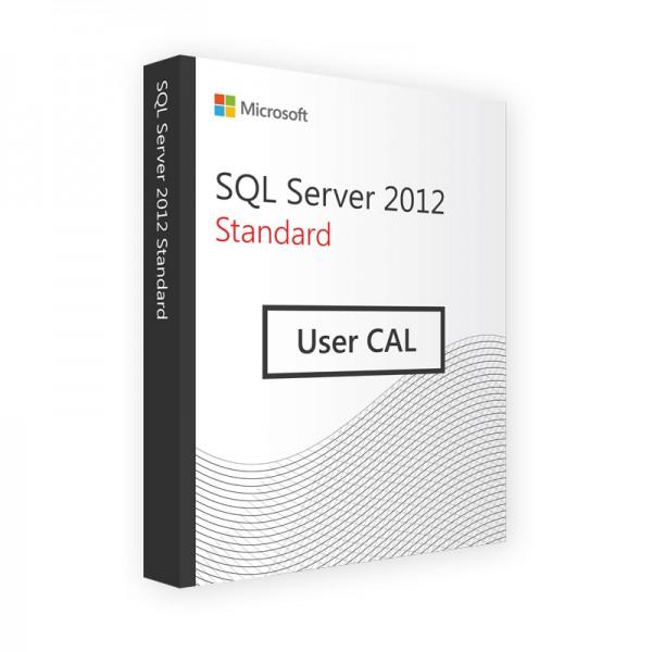 Mirosoft SQL Server 2012 Standard - 1 User CAL