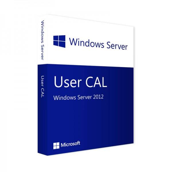 Microsoft Windows Server 2012 - 1 User CAL
